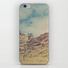 Destination iPhone & iPod Skin