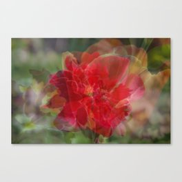 Carnival of Flowers - Red Canvas Print