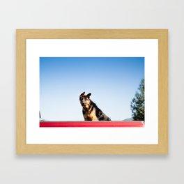 Dog Eared Framed Art Print