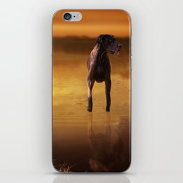 All Creatures In Peace iPhone Skin