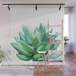 succulent echeveria Wall Mural