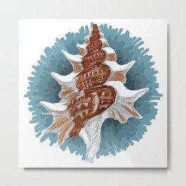 Mollusk (Seashell) - Molusco (Caracola) Metal Print