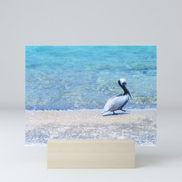 Strutting Pelican Mini Art Print