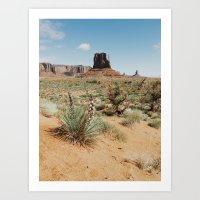 Blooming Southwest Desert Yucca Art Print