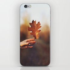 Catching a bit of Autumn iPhone & iPod Skin
