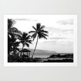 Tropical Darkroom #447 Art Print