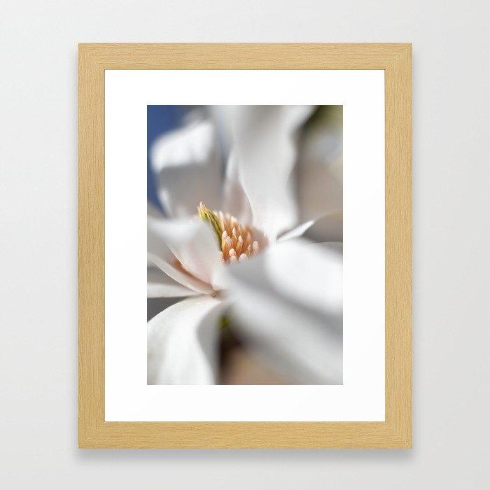 Milky magnolia Framed Art Print