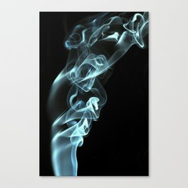 Smokey 8 Canvas Print