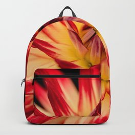 Bursting in color Backpack