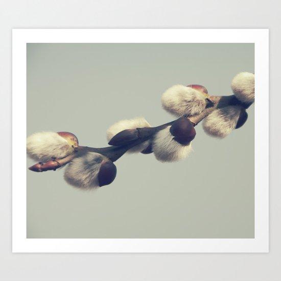 Fluffy gray Art Print