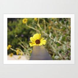 Little Yellow Art Print