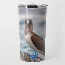 Galapagos blue footed booby bird photography Travel Mug