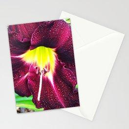 Kalia Stationery Cards