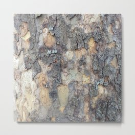 Abstracts in Nature Series -- Sycamore Bark Metal Print