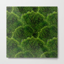 Moss - Green Luscious Mossy Texture - Full on Natural Moss Mounds- Earthy Greens -Turning Moss Green Metal Print