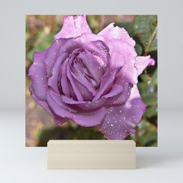 A Rose is a Rose Mini Art Print