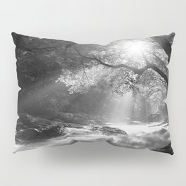 See the beauty series - I. -  Pillow Sham