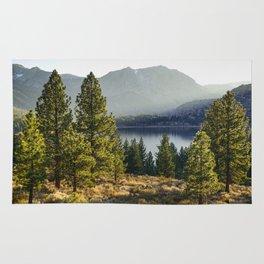 Beautiful landscape in California Rug