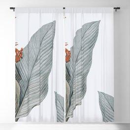 gentle palms Blackout Curtain