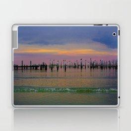 Pelicans Laptop & iPad Skin