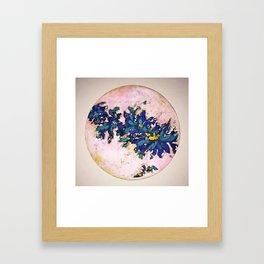 Lucent Framed Art Print