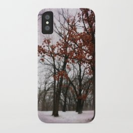 Winter Mood iPhone Case