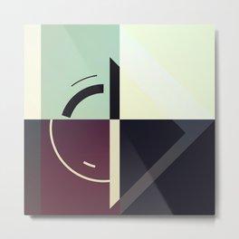 PJY/81 Metal Print