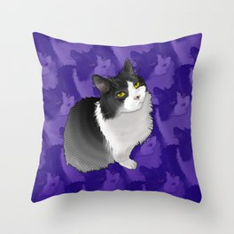 Spider Man the Cat Throw Pillow