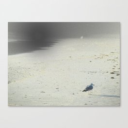 On The Beach, Winter Canvas Print