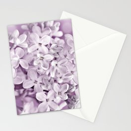Spring 097 Stationery Cards
