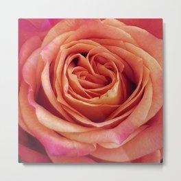 A Summer Bouquet 12 - orange rose Metal Print