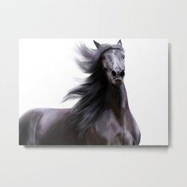 Black running horse Metal Print