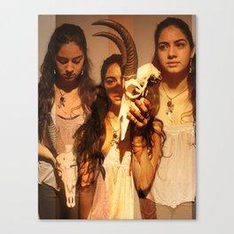 Atiyeh Canvas Print