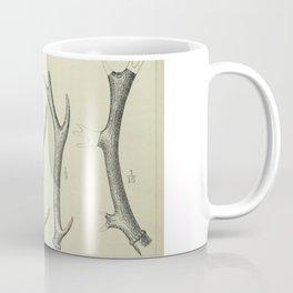 Vintage Antlers Coffee Mug