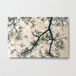 Magnolie beige Metal Print