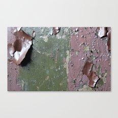 Lead paint anyone? Canvas Print