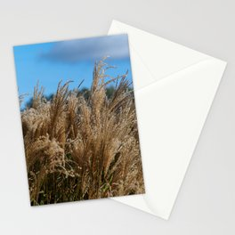 Chinese Silver Grass in a Yorkshire Garden Stationery Cards