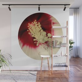 Hibiscus Flower Close Up Photography Floral Art Wall Mural