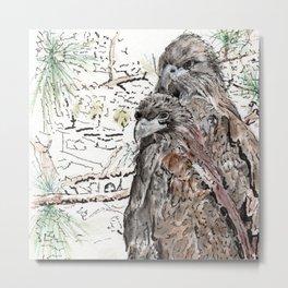 Southwest Florida Eagles Metal Print
