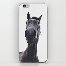 Simply horse iPhone & iPod Skin