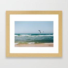 Gull Flight Over Lake Michigan Framed Art Print