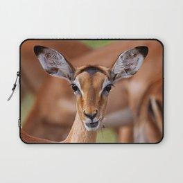 Young Impala - Africa wildlife Laptop Sleeve