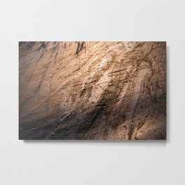 Ice age, copper Metal Print