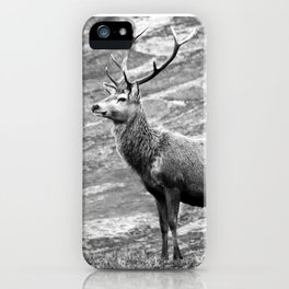 Stag b/w iPhone Case