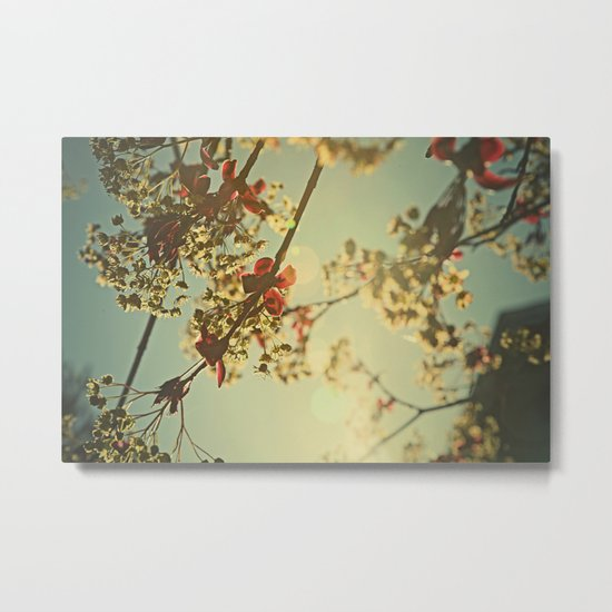 Welcome Spring | 02 Metal Print