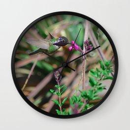 Beautiful Hummer Wall Clock