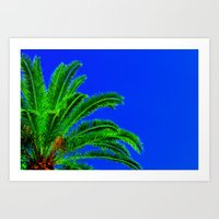 palm tree Art Prints featuring Palm Tree by Phil Smyth