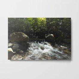 trickling creek Metal Print