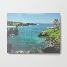 Hawaiian Hideaway Metal Print