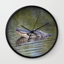 Large American alligator looking out of water in Florida lake Wall Clock